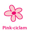 Pink ciclam